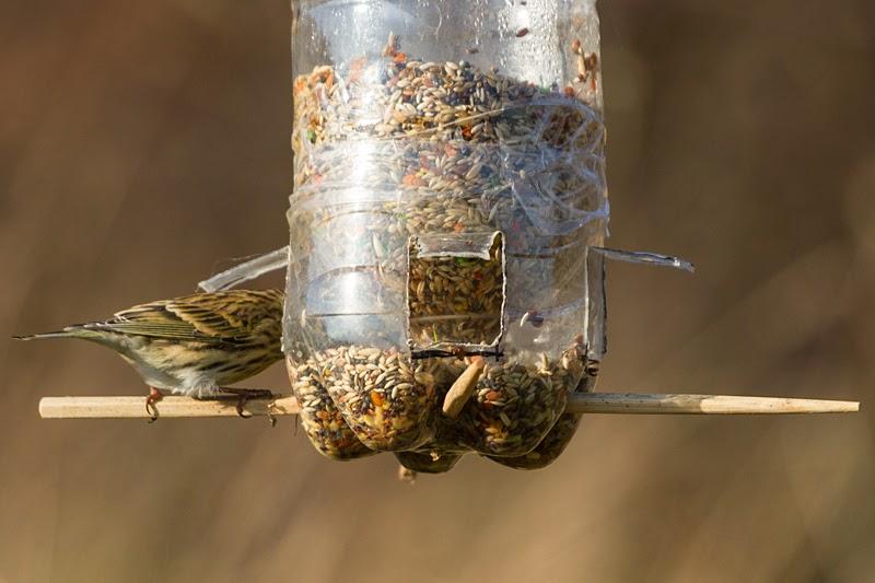Serantes Natura Comedero Para Aves Casero