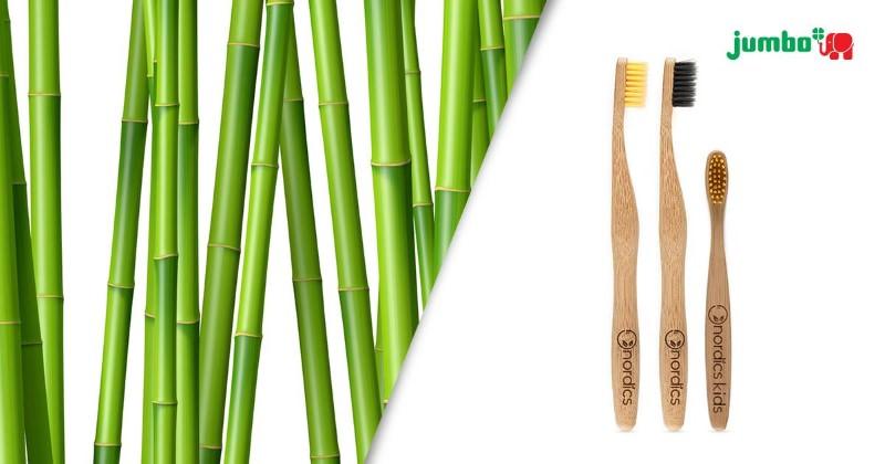 Escovas de dentes de bambu