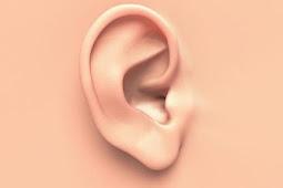 Obat untuk Menyembuhkan Gendang Telinga yang Pecah