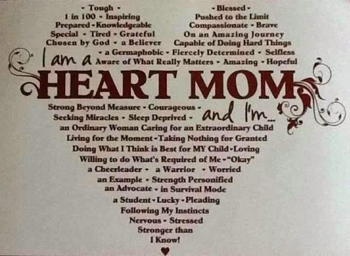 Heart Of A Warrior Quotes: Mollygog Blog: Being A Heart Mom During CHD Awareness Week