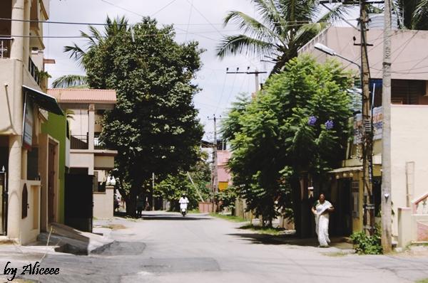Sudul-Indiei-Bangalore-impresii-calatorie