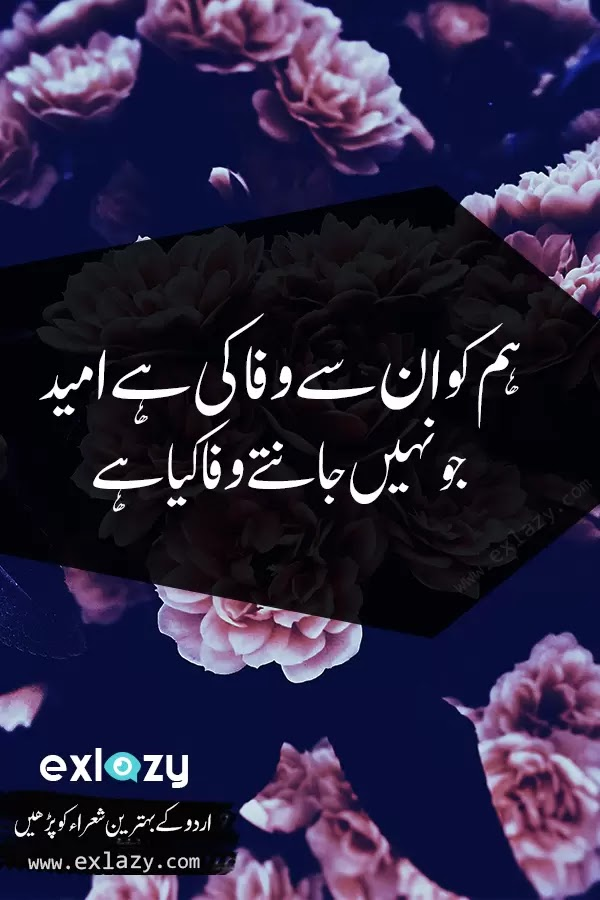 The Best 2 Line Poetry by Famous Urdu Poets