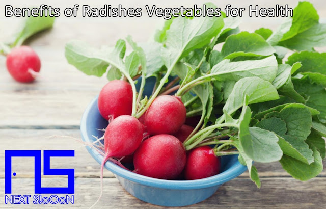 Radishes Vegetables, What Is Radishes Vegetables, Understanding Radishes Vegetables, Explanation of Radishes Vegetables, Benefits of Radishes Vegetables for Health, Benefits of Radishes Vegetables for the Body, Nutrition of Radishes Vegetables, Vitamins for Radishes Vegetables, Vitamins and Radishes Vegetables Nutrition for Body Health, Get a Healthy Body with Radishes Vegetables, Information about Radishes Vegetables, Complete Info about Radishes Vegetables, Information About Radishes Vegetables, How the Nutrition of Vitamin Radishes Vegetables is, What are the Benefits of Radishes Vegetables for the Body, What are the Benefits of Radishes Vegetables for Health, the Benefits of Radishes Vegetables for Humans, the Nutrition Content of Radishes Vegetables provides many benefits for body health.