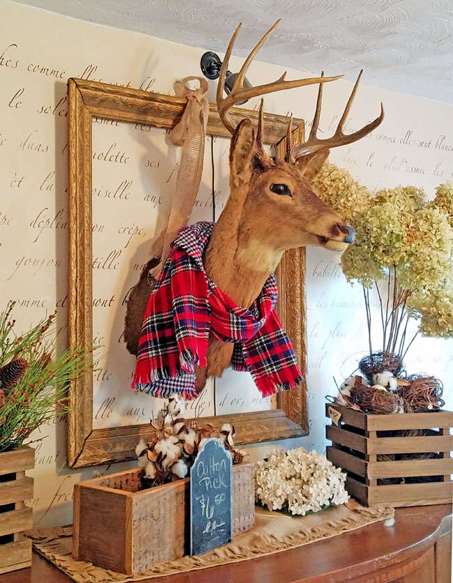 deer head within a frame on the wall