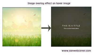 Image overlay effect on hover using css