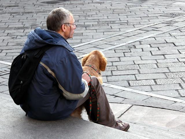 Пёс в Турине