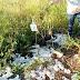 Lixo Hospitalar é flagrado no lixão de Acrelândia: Ministério Público poderá ser acionado.