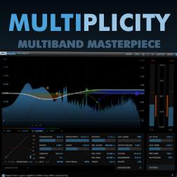 DMG Multiplicity