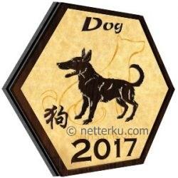 Dog 2017 - Netterku.com