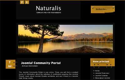 Free NaturalisDark Joomla 2.5 Template (globbersthemes.com)