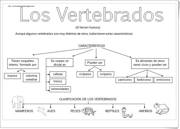 """""""Los vertebrados"""" (Esquemas de Ciencias Naturales de Primaria)"""