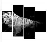 El año del tigre, antología poética, Ancile