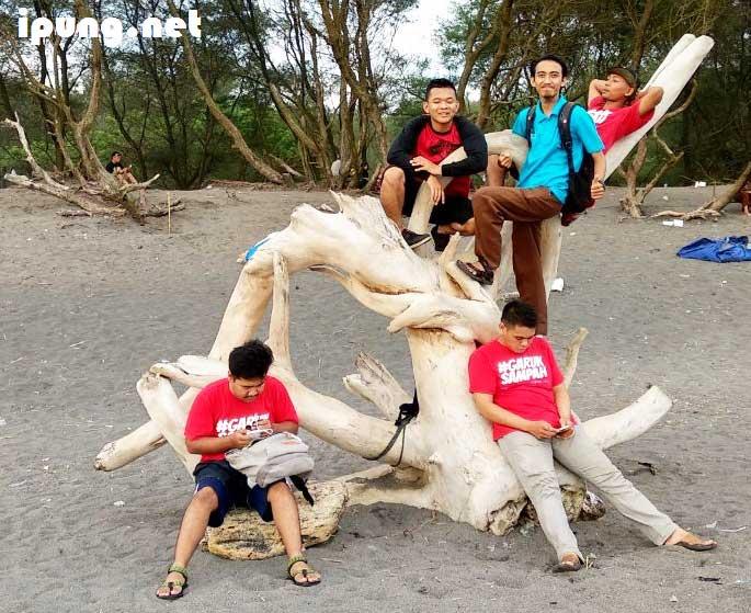 Gotong Royong Bersih Pantai Goa Cemara Yogyakarta Bersama Komunitas Jogja Garuk Sampah