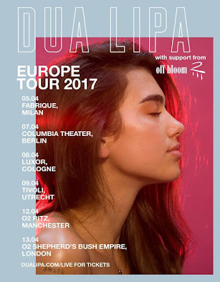 Dua Lipa Europe Tour poster (Sunny Stuart Winter)