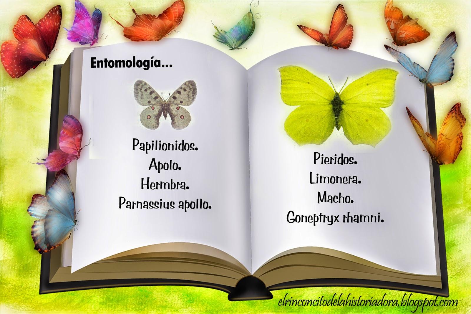 http://elrinconcitodelahistoriadora.blogspot.com.es/2014/06/coleccion-de-cupones-de-la-once.html