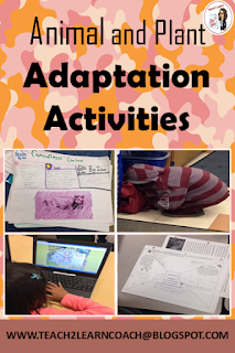 Find out about different engaging activities and assignments used to teach animal and plant adaptations!