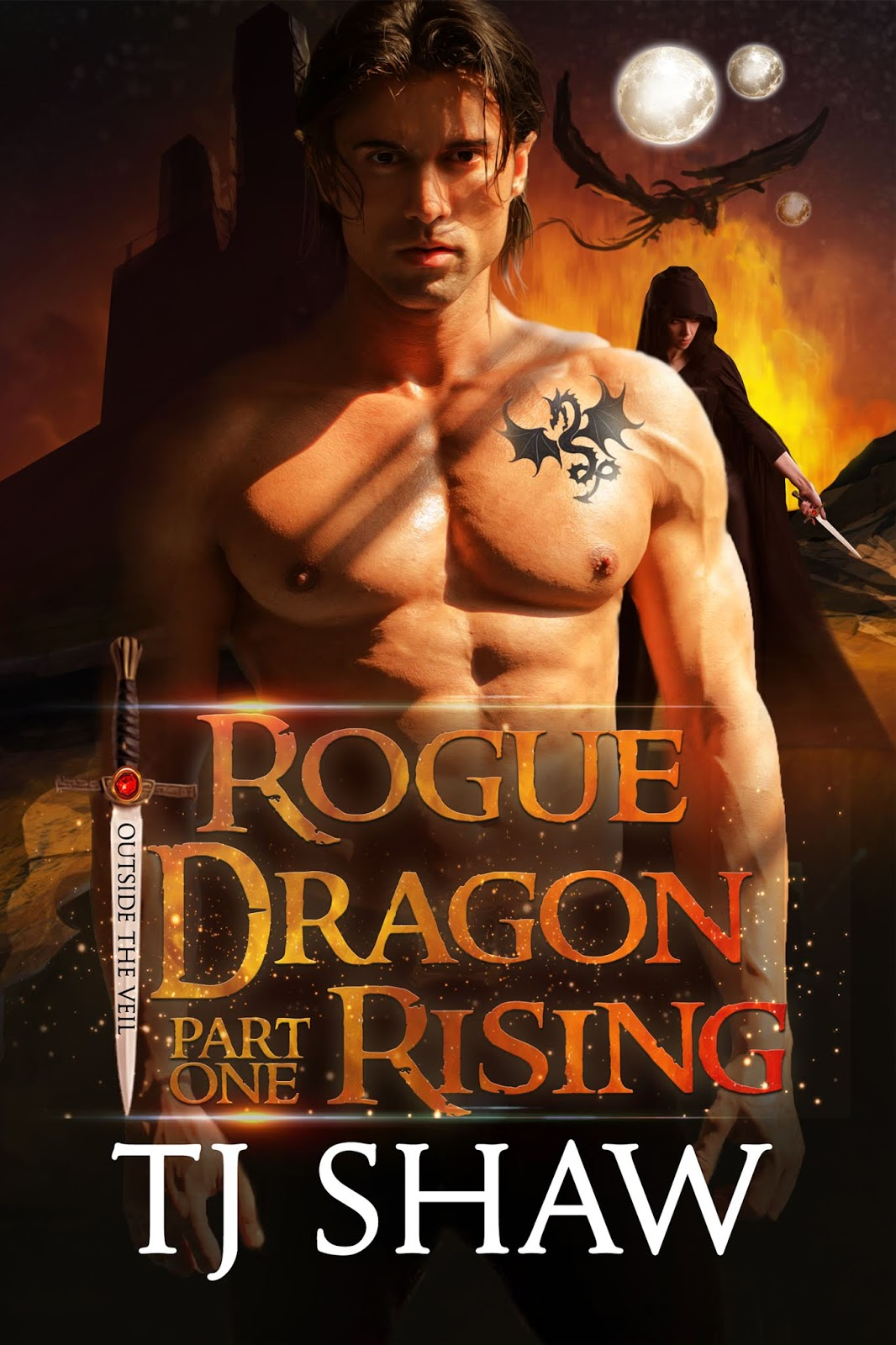 Goddess Fish Promo Book Blast: Rogue Dragon: Rising by TJ Shaw