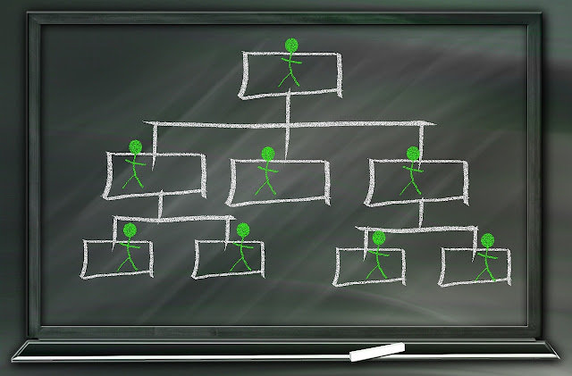estructuras jerárquicas y organizaciones tejeredes