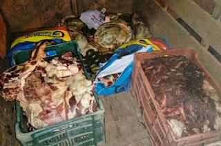 http://vnoticia.com.br/noticia/1762-vigilancia-sanitaria-de-sao-francisco-de-itabapoana-apreende-carne-impropria-para-consumo