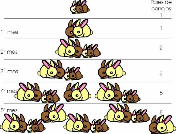 Resultado de imagen de fibonacci conejos