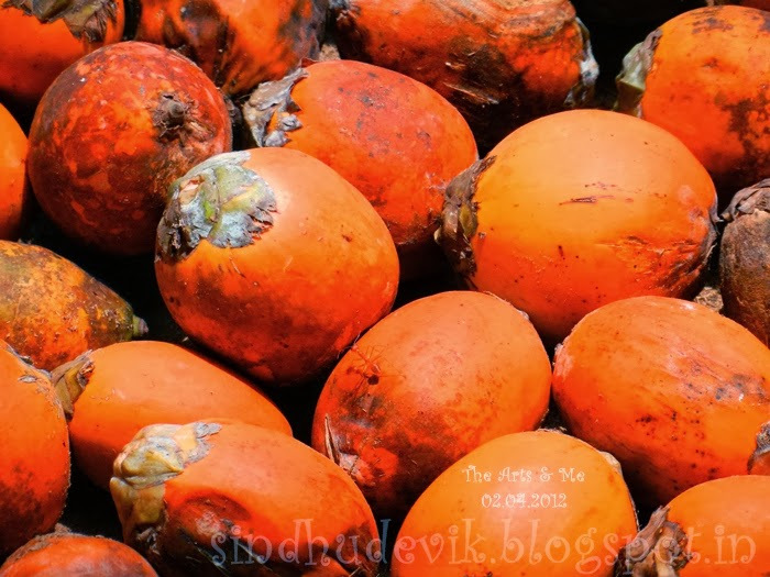 A mass of bright reddish orange fresh ripe arecanuts and a red ant.
