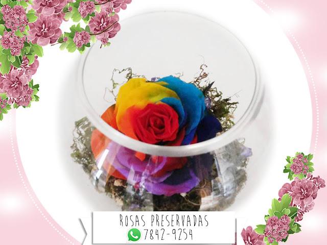 Centros de Mesa con Rosas Preservadas Arreglos Decoración Manualidades Rosa Arco Iris