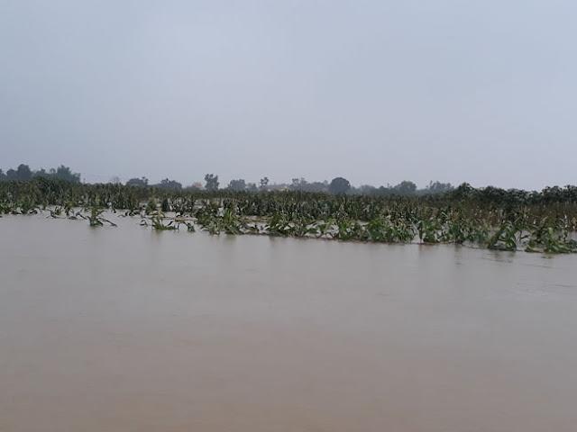 Chùm ảnh lũ lụt tại Giáo xứ Dương Sơn – Huế - Ảnh minh hoạ 18