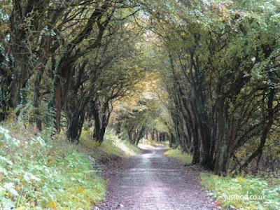 Walking path on Sutton Bank North Yorkshire