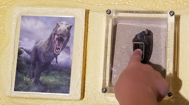amazing dinosaur exhibit