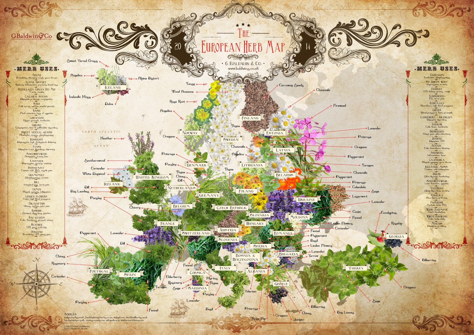 The European herb map