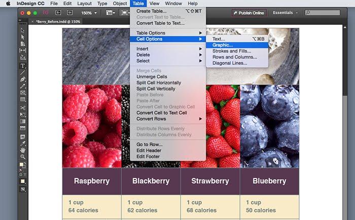 adobe indesign cs4 free  for windows xp
