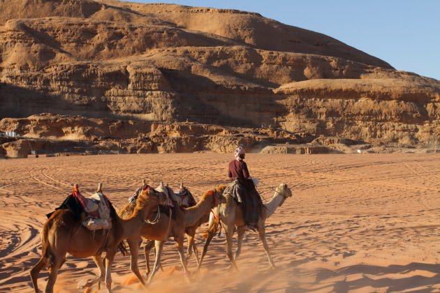 A Bedouin and his camels walk the deserts of Wadi Rum, Jordan