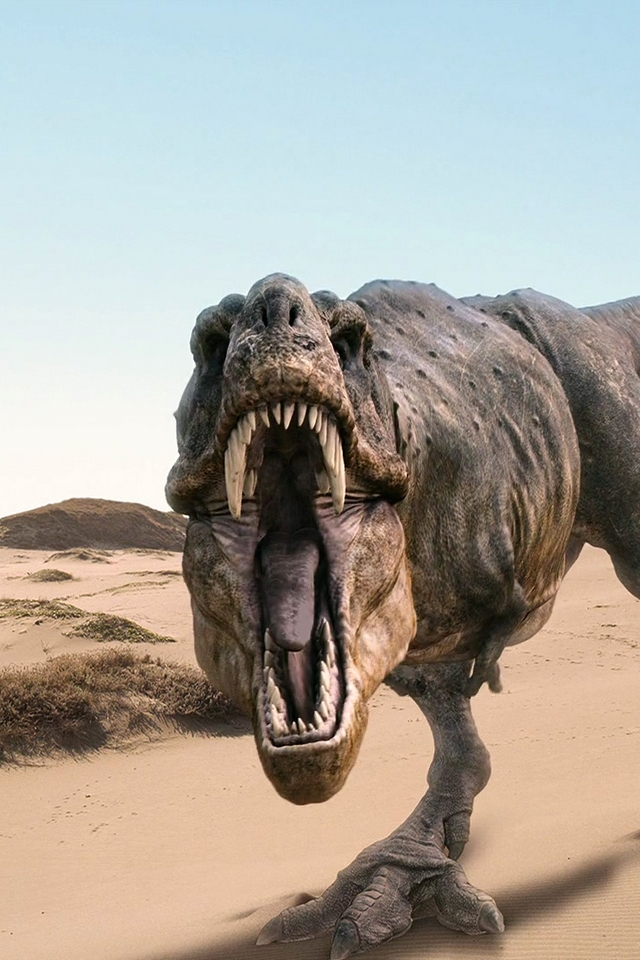 Tyrannosaurus Dinosaurs - Download iPhone,iPod Touch,Android Wallpapers, Backgrounds,Themes