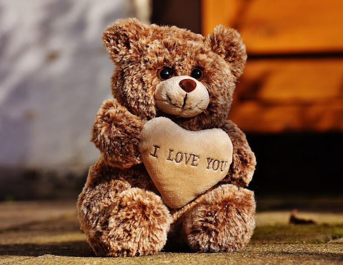 Happy Teddy Day 2021 : Images Pics Photos Pictures Wishes Status Shayari Messages Wallpaper