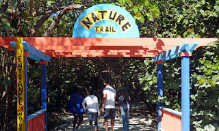 Things to do at Coco cay Bahamas, spending a day at coco cay, royal caribbean private island coco cay, how to explore coco cay royal caribbean island, my life on a cruise ship - mustafa pathan
