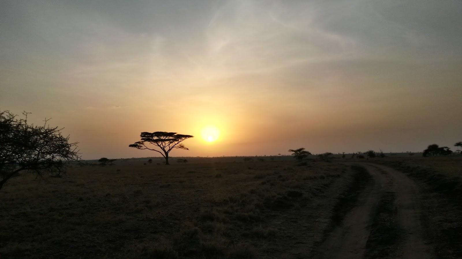 sunrise africa afrika