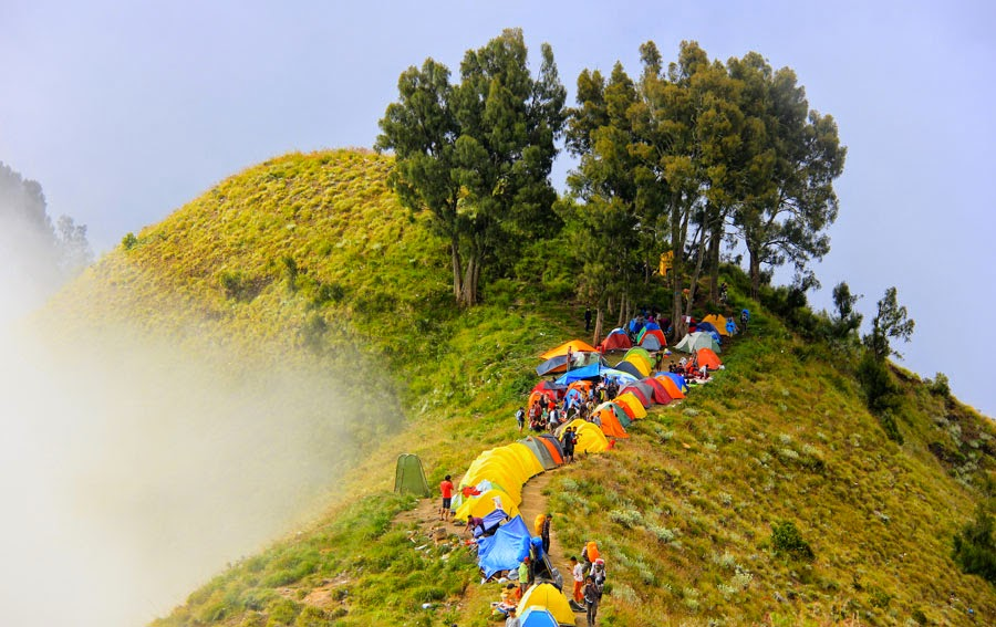 Location Plawangan Sembalun Crater Rim altitude 2639 m of Mount Rinjani