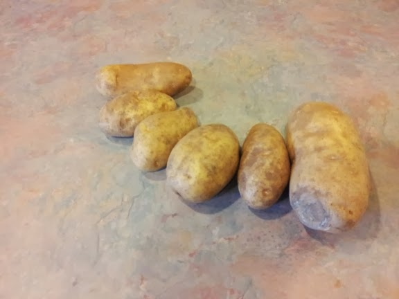Primal Bodhi: 4 day potato hack