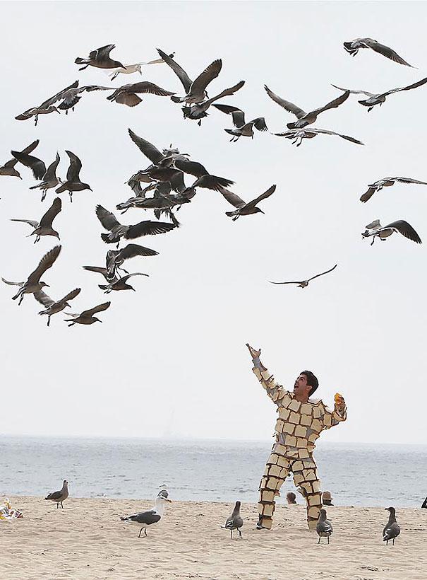 Many Birds