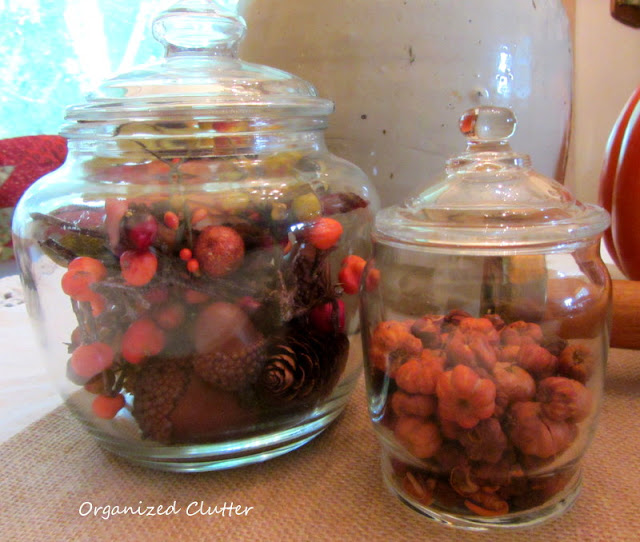 Fall berries, pinecones, acorns and putka pods in clear glass jars