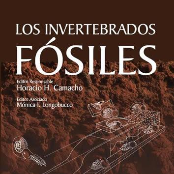 Los invertebrados fosiles   Fosiles