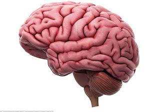 Novo teste detecta Alzheimer antes dos sintomas