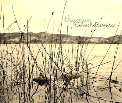 CEHACHERESPIRA - Thymus (2013)