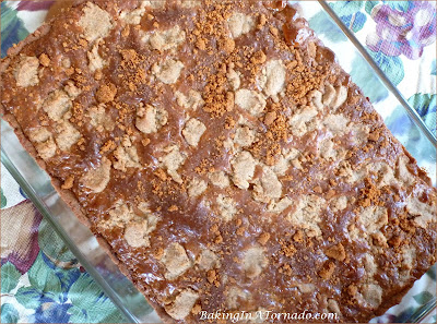 Cinnamon Biscoff Gingerbread Squares, a Gingerbread cookie crust with a chewy center and biscoff cookie topping | Recipe developed by www.BakingInATornado.com | #recipe #Thanksgiving #dessert