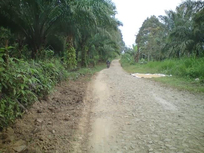 Jalan menuju Air Terjun Tanjung Raja