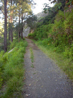 jalan setapak menuju kelimutu