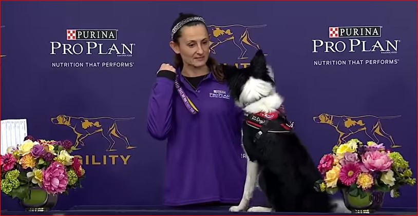Thoughts from Mary Rae Fouts: Wow! Watch Border Collie Fame win the