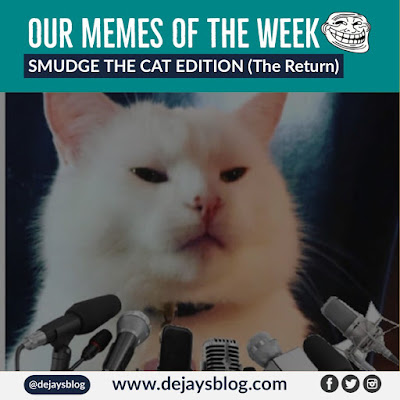 OUR MEMES OF THE WEEK #46: SMUDGE THE CAT EDITION (THE RETURN)