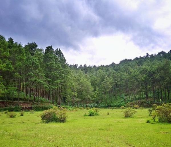Tanah Goyang