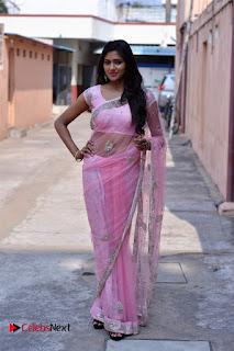 Telugu Actress Shalu Chourasiya Stills in Cute Pink Saree at Pochampally IKAT Art Mela  0005.jpg